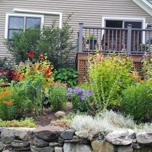 A happy, healthy new garden provides colorful views from two oft used porches, and habitat for birds, bees, butterflies.